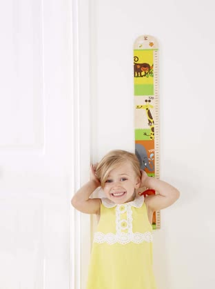 Hape yardstick - The yardstick by Hape will enable you to record your little one's growth.