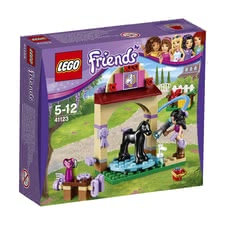 LEGO Friends wash house for Emma's foal -